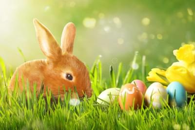 How Did Easter Become Represented by an Easter Bunny?