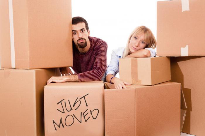 8 Tip & Tricks For The Big Move
