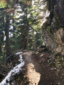 Get Outside: Seattle Area Trails and Walks in the Winter