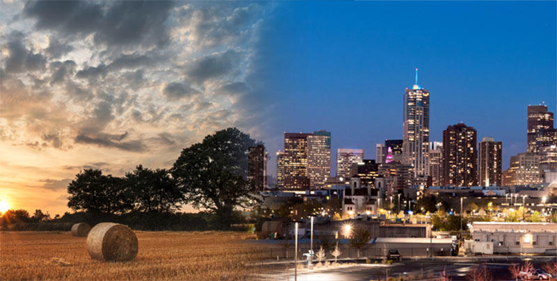Country life or city dwelling: Which lifestyle works for you?