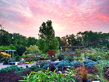 Our Favorite Chicago Suburb Garden Centers