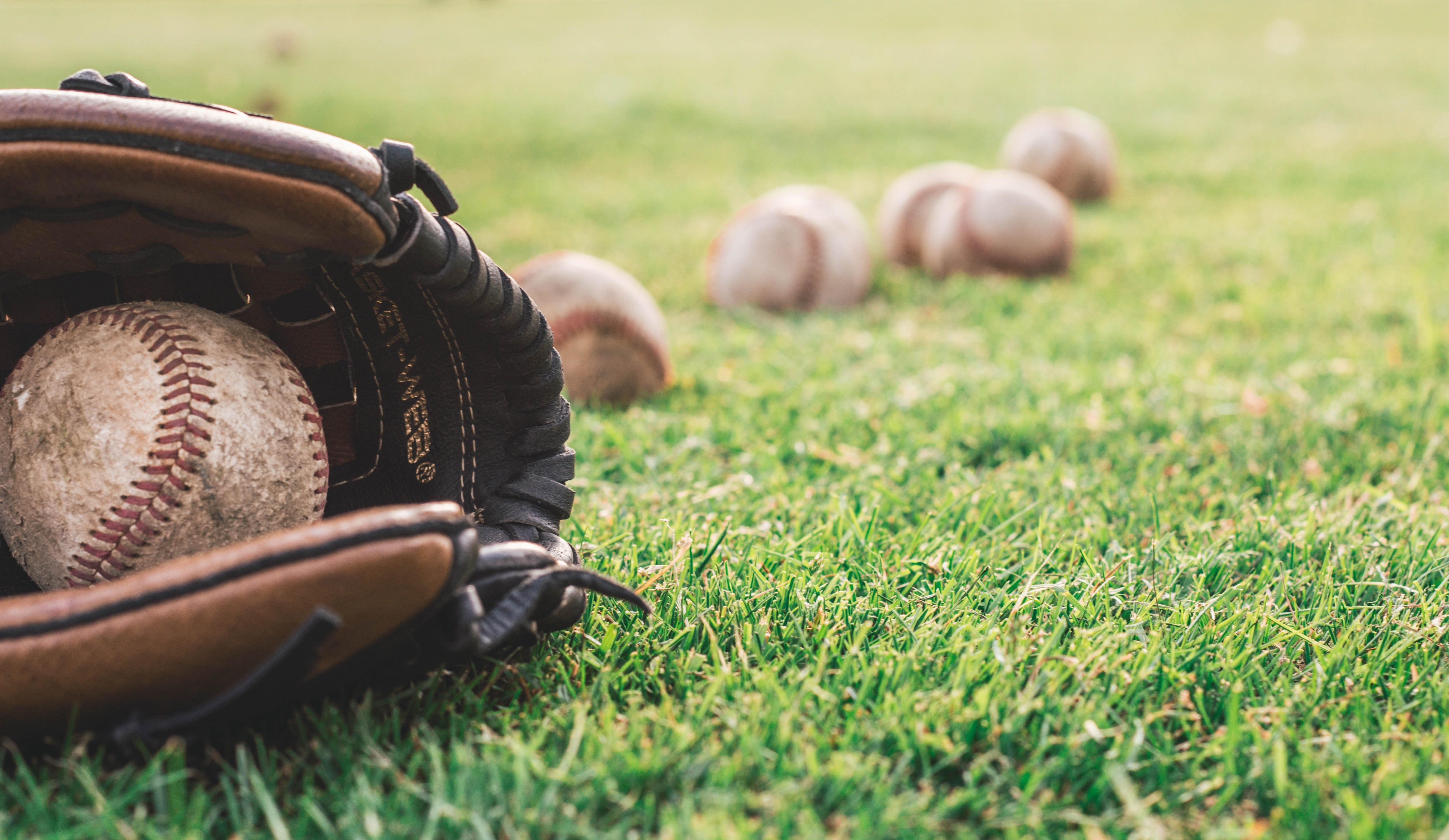 Take Me Home For the Ball Game: Baseball in 2020